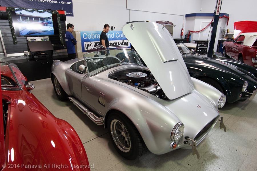 Silver Cobra
